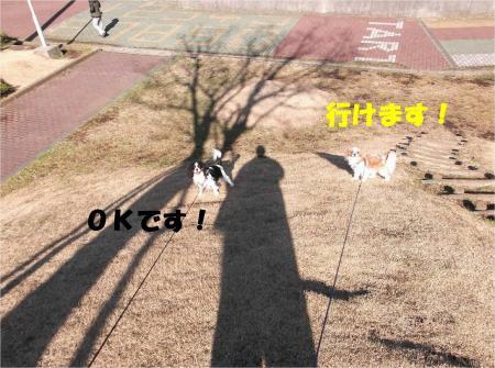 03_convert_20130212175641.jpg