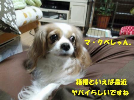 03_convert_20130219171001.jpg