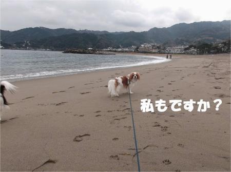04_convert_20130218180858.jpg