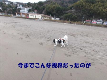 04_convert_20130221184112.jpg