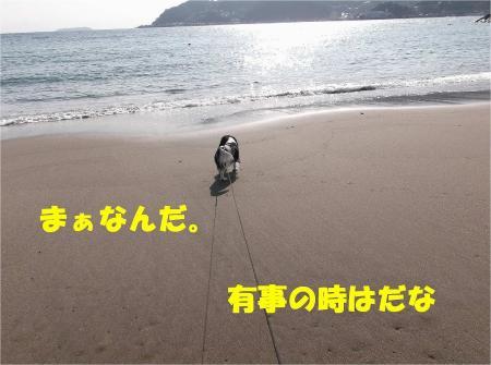 04_convert_20130304180250.jpg