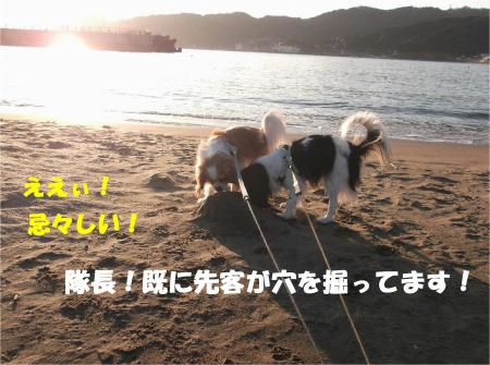 05_convert_20130204172413.jpg
