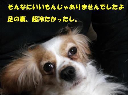 05_convert_20130215181746.jpg