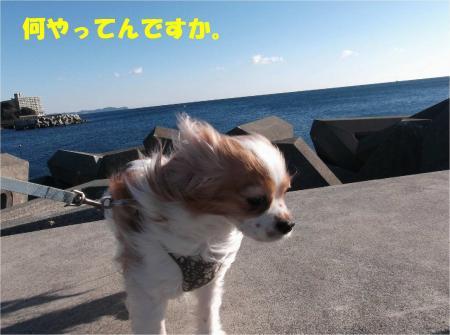 05_convert_20130225173106.jpg