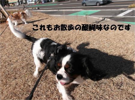 06_convert_20130225173119.jpg