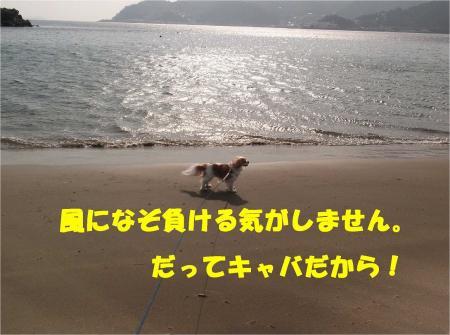 07_convert_20130311175506.jpg