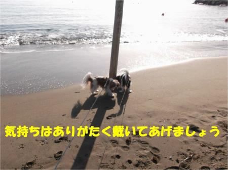 07_convert_20130318174244.jpg
