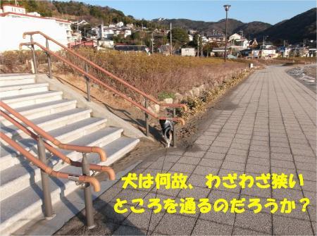 08_convert_20130204172455.jpg