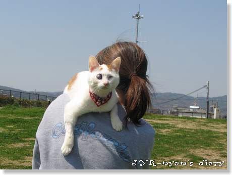 daichi120408_13