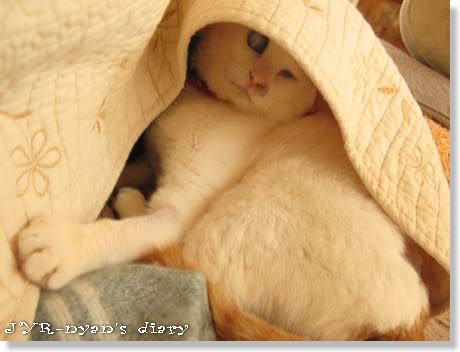 daichi120420_8
