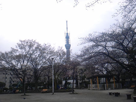 2011040306