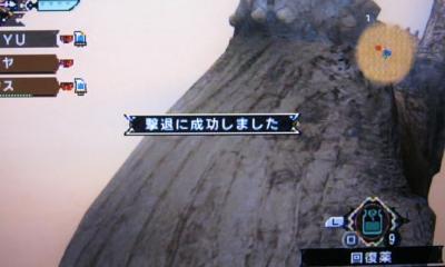 miyu_3697.jpg