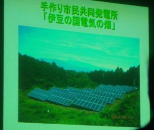 伊豆の国電気の畑