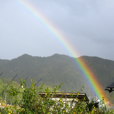 2011-11-rainbow.jpg