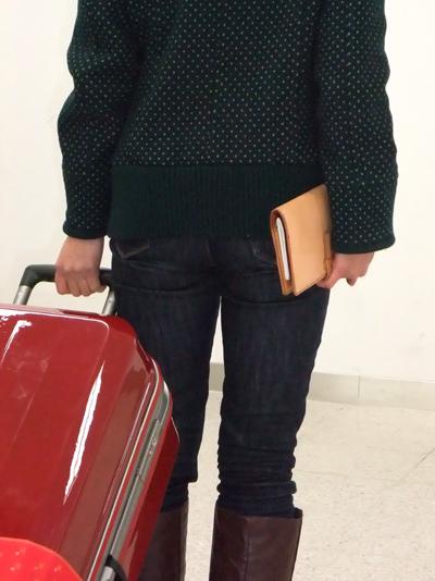 passport-case-01.jpg