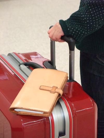 passport-case-02.jpg