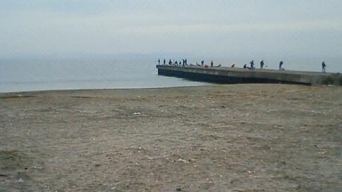 20101121-2