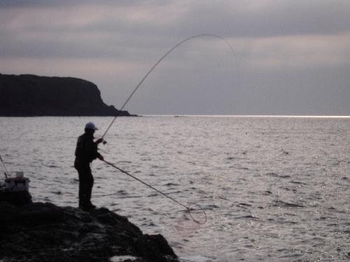 大美漁(タモ入れ)