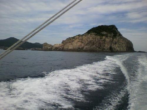 椛島 草島