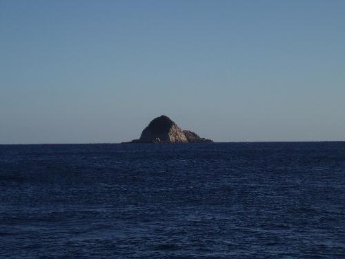 椛島 草島 ①