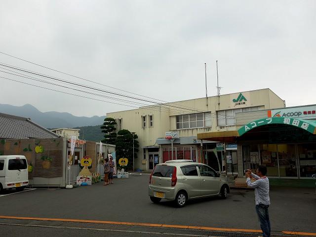 0907-nasi-002-S.jpg