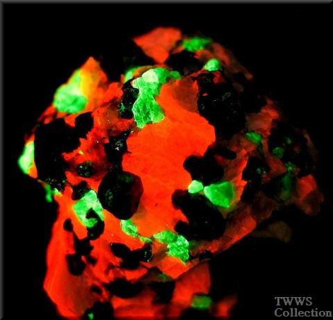 フランクリン鉄鉱&珪亜鉛鉱&紅亜鉛鉱_ニュージャージー1短波蛍光