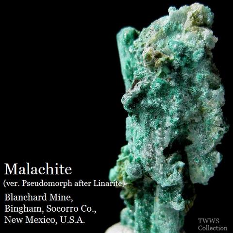 青鉛鉱仮晶孔雀石_ニューメキシコ1