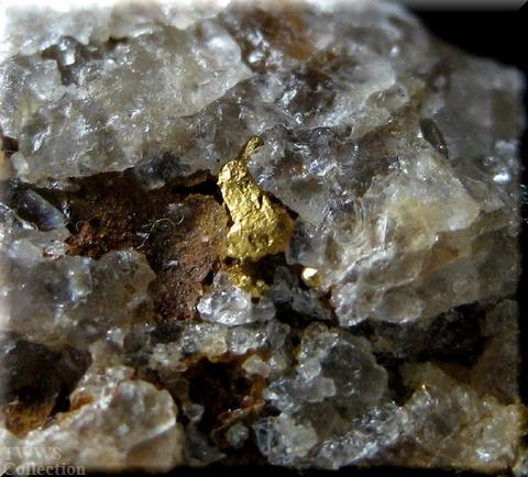 自然金_ブラジル1結晶1