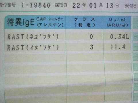 2010012811040000.jpg