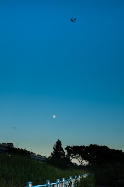 20110713-_DSC5094.jpg