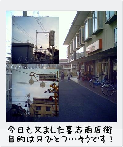 cats_20100216202210.jpg