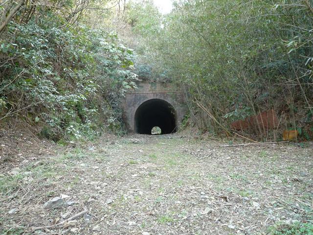 旧椿トンネル5
