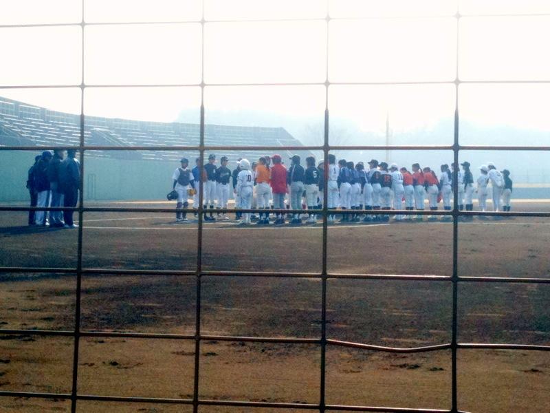 女子野球6