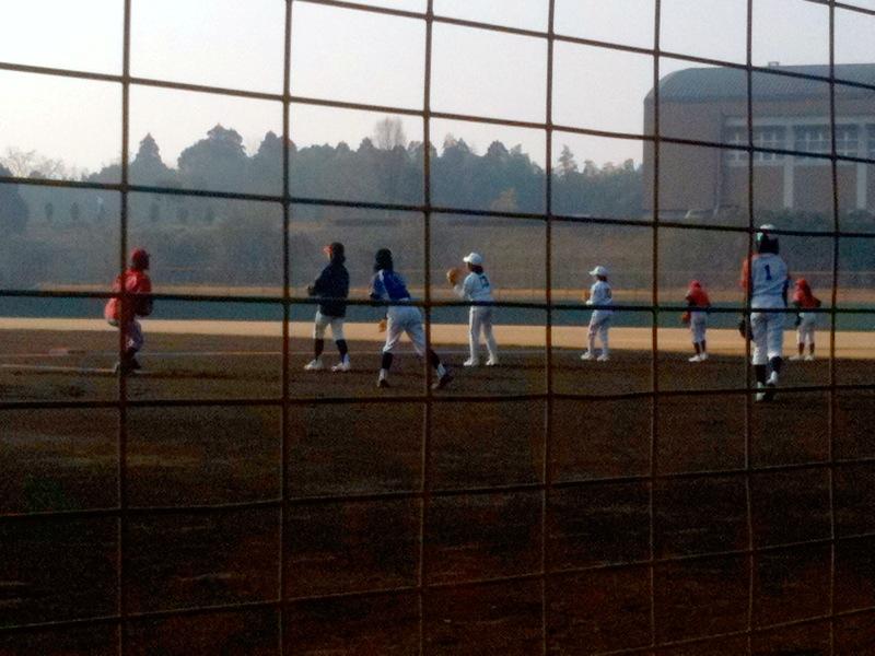 女子野球8