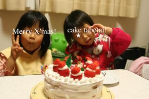 2009年のクリスマスケーキ