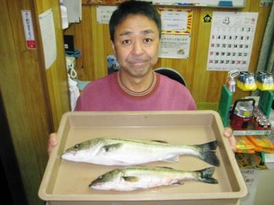 20110419uemura.jpg