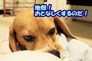 0_20110411213845.jpg