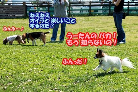 10_20110508221720.jpg