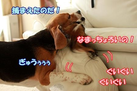 10_20110722221220.jpg