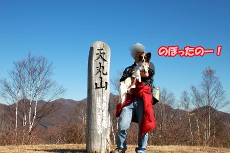 10_20111108165110.jpg