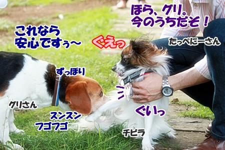 11_20110606223130.jpg