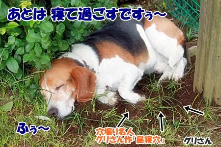 12_20110606223128.jpg