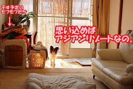 1_20110520221105.jpg