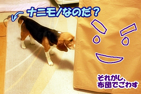1_20110602111625.jpg