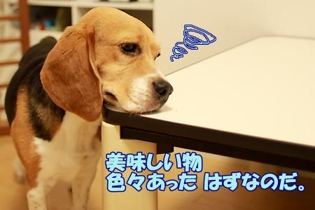 1_20110707223549.jpg