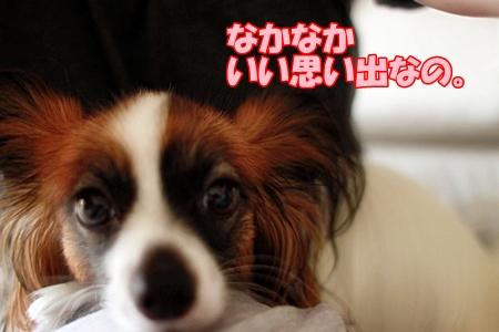 1_20110713010911.jpg