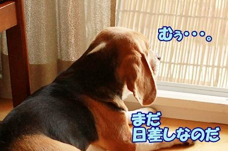 1_20110726211511.jpg