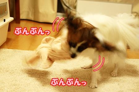 1_20110901000241.jpg
