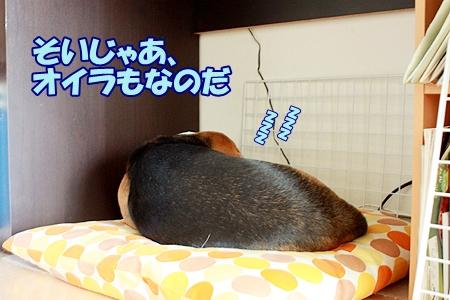 2-2_20111004120419.jpg