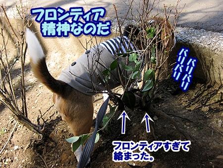 2_20110327000958.jpg